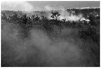 Steam vents. Hawaii Volcanoes National Park, Hawaii, USA. (black and white)