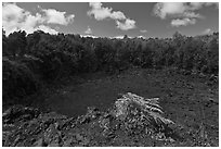 Lua Manu crater. Hawaii Volcanoes National Park, Hawaii, USA. (black and white)