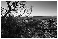 Sunrise from Mauna Loa overlook. Hawaii Volcanoes National Park ( black and white)