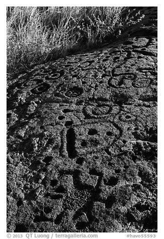 Hardened lava with panel of pecked images. Hawaii Volcanoes National Park (black and white)