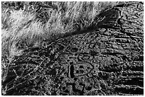 Lava slab covered with petroglyphs. Hawaii Volcanoes National Park, Hawaii, USA. (black and white)