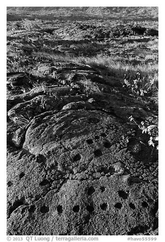Petroglyph with motif of cupules and holes. Hawaii Volcanoes National Park (black and white)