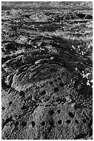 Petroglyph with motif of cupules and holes. Hawaii Volcanoes National Park, Hawaii, USA. (black and white)
