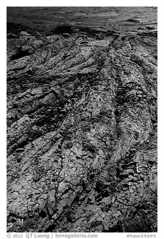 Close-up of green Olivine-rich lava flow. Hawaii Volcanoes National Park (black and white)