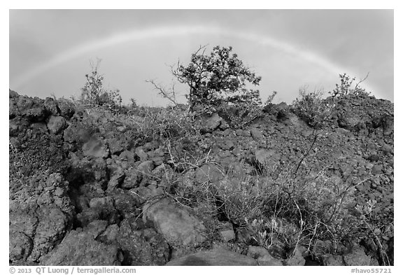 Srubs, lava, and rainbow, Kau desert. Hawaii Volcanoes National Park (black and white)