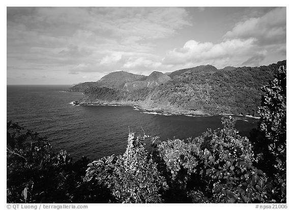 Afono bay, late afternoon, Tutuila Island. National Park of American Samoa (black and white)