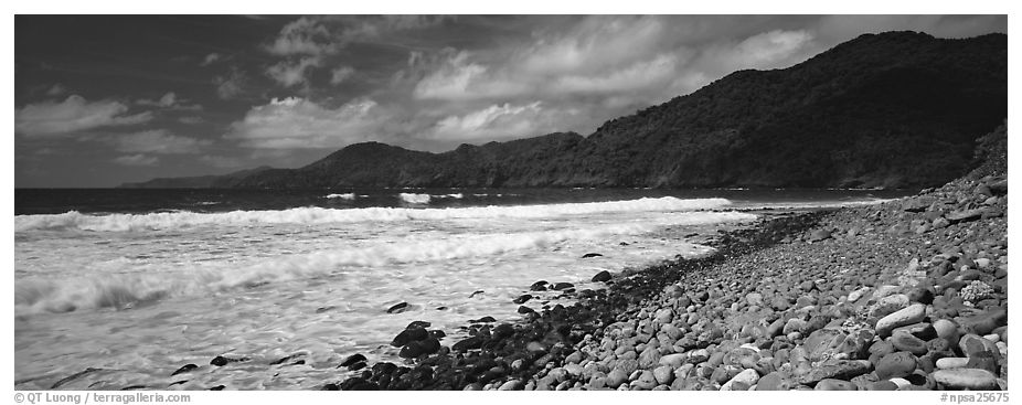 Beach with coral, Tutuila Island. National Park of American Samoa (black and white)