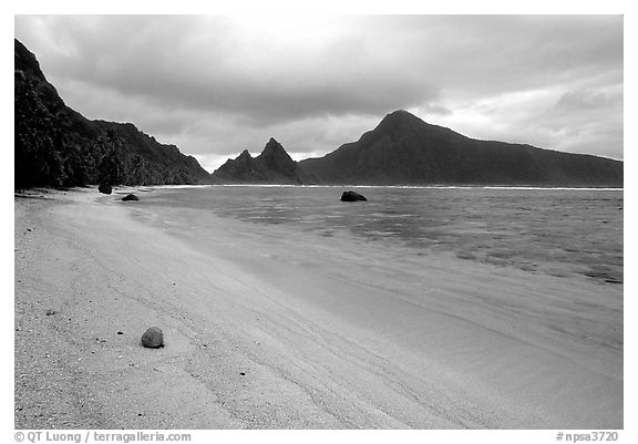 Fallen coconut on South Beach, Ofu Island. National Park of American Samoa (black and white)