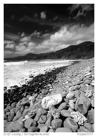 Coral heads on beach and dark hills, Tutuila Island. National Park of American Samoa (black and white)