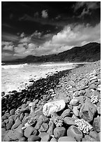 Coral heads on beach and dark hills, Tutuila Island. National Park of American Samoa ( black and white)