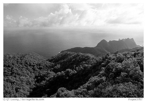 Tropical forest and Ocean from Mont Alava, Tutuila Island. National Park of American Samoa (black and white)