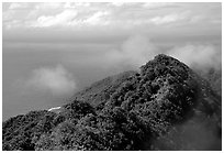 Forested ridges and Pacific Ocean from Mont Alava, Tutuila Island. National Park of American Samoa (black and white)