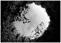 Sky through the top of old sugar mill. Virgin Islands National Park, US Virgin Islands. (black and white)