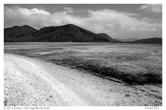 Beach, reef, and hills, Leinster Bay, morning. Virgin Islands National Park (black and white)