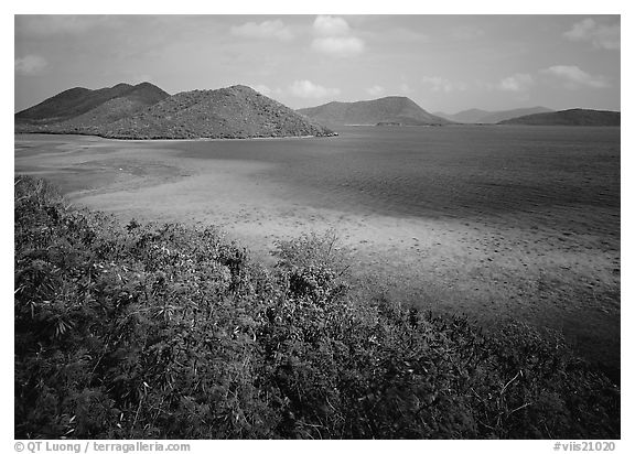 Tropical island environment with turquoise waters. Virgin Islands National Park (black and white)