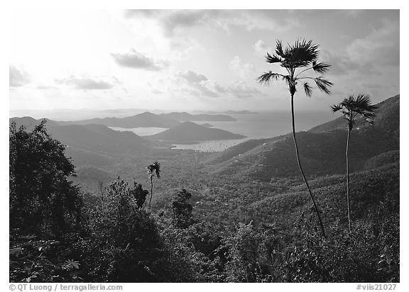Coral Harbor seen from Centerline Road, morning. Virgin Islands National Park (black and white)