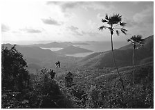 View over East end of island. Virgin Islands National Park, US Virgin Islands. (black and white)