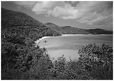 Hawksnest Bay. Virgin Islands National Park, US Virgin Islands. (black and white)