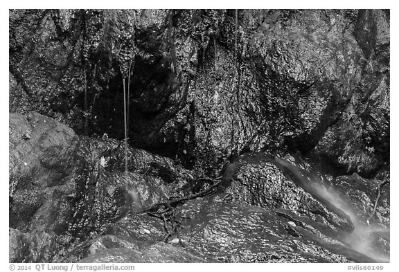 Water drips on rocks, Reef Bay. Virgin Islands National Park (black and white)