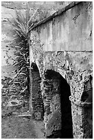Wall and arch, Reef Bay sugar factory. Virgin Islands National Park ( black and white)