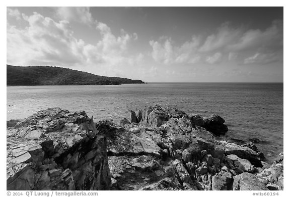 Rocky headlead, Yawzi Point. Virgin Islands National Park (black and white)