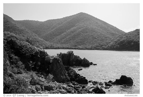 Jagged shoreline and green hills, Great Lameshur Bay. Virgin Islands National Park (black and white)
