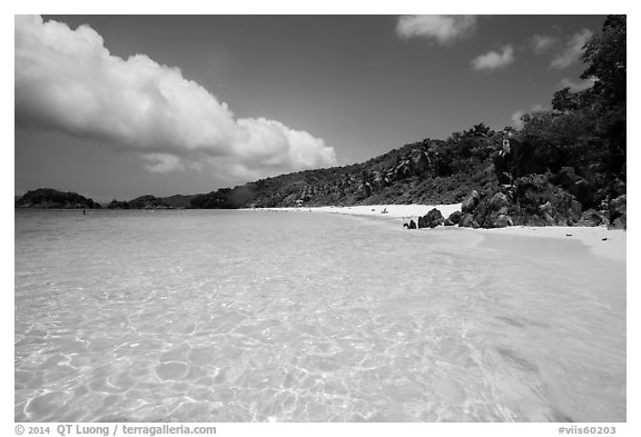 Trunk Bay Beach. Virgin Islands National Park (black and white)