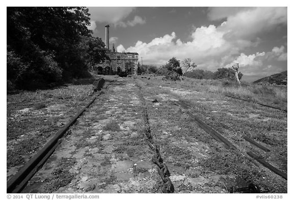 Rails and chain leading to Creque Marine Railway power house, Hassel Island. Virgin Islands National Park (black and white)