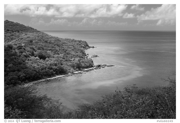 Forested slopes and reef, Hassel Island. Virgin Islands National Park (black and white)