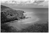 Forested slopes and reef, Hassel Island. Virgin Islands National Park ( black and white)
