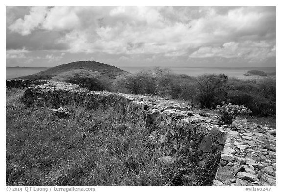 Shipleys Battery, Hassel Island. Virgin Islands National Park (black and white)