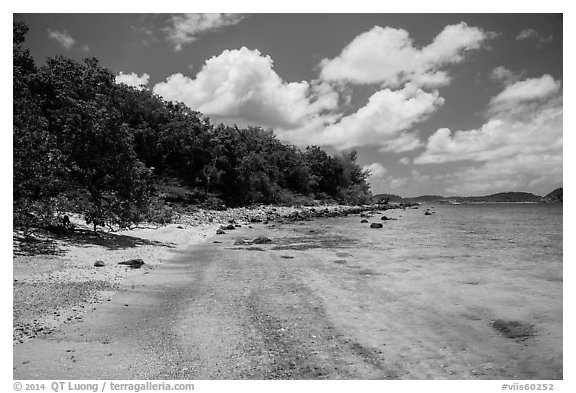 Shoreline and reef, Hassel Island. Virgin Islands National Park (black and white)