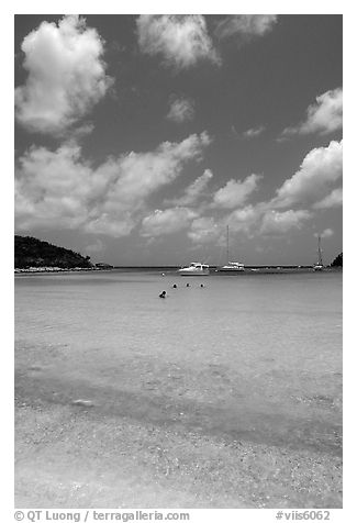 Tropical beach and yachts. Virgin Islands National Park (black and white)