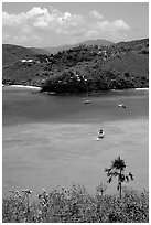 Tropical anchorage, Francis Bay. Virgin Islands National Park, US Virgin Islands. (black and white)