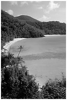 Tropical hills and beach, Hawksnest Bay. Virgin Islands National Park, US Virgin Islands. (black and white)