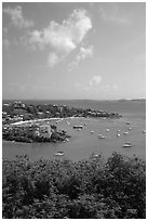 Cruz Bay harbor. Virgin Islands National Park, US Virgin Islands. (black and white)