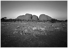Olgas at sunset. Olgas, Uluru-Kata Tjuta National Park, Northern Territories, Australia ( black and white)