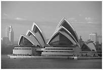 Opera house. Sydney, New South Wales, Australia ( black and white)