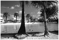 Artificial beach, complete with sand and palm trees. Brisbane, Queensland, Australia (black and white)