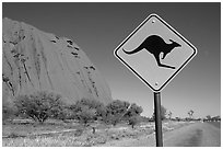 Kangaroo crossing sign near Ayers Rock. Australia ( black and white)
