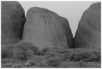 Olgas, dusk. Olgas, Uluru-Kata Tjuta National Park, Northern Territories, Australia ( black and white)