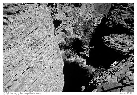 Kings Canyon walls,  Watarrka National Park. Northern Territories, Australia (black and white)