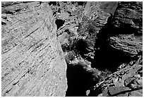 Kings Canyon walls,  Watarrka National Park. Northern Territories, Australia ( black and white)