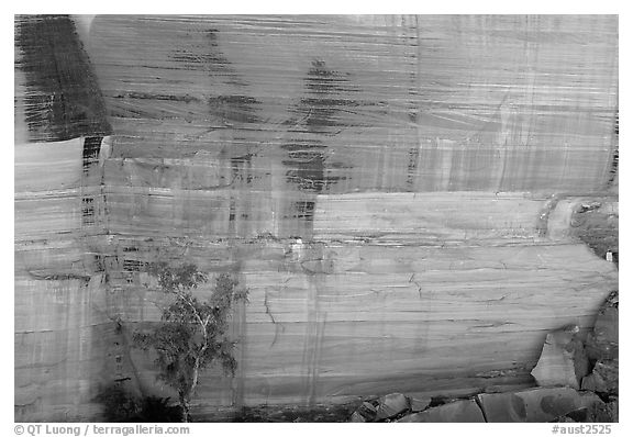 Rock wall striated with desert varnish in Kings Canyon,  Watarrka National Park. Northern Territories, Australia (black and white)