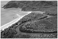 Aerial meandering river in rainforest and beach near Cape Tribulation. Queensland, Australia (black and white)