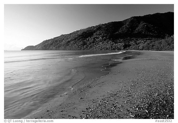 Beach near Cape Tribulation. Queensland, Australia (black and white)