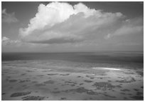 Aerial view of a reef near Cairns. The Great Barrier Reef, Queensland, Australia (black and white)