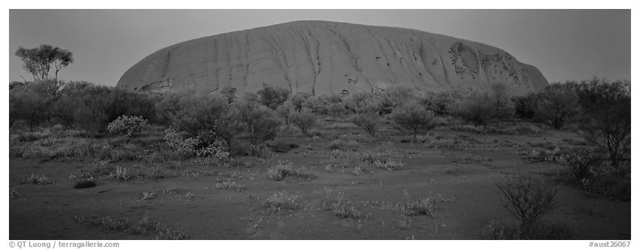 Ayers rock at twilight. Uluru-Kata Tjuta National Park, Northern Territories, Australia (black and white)