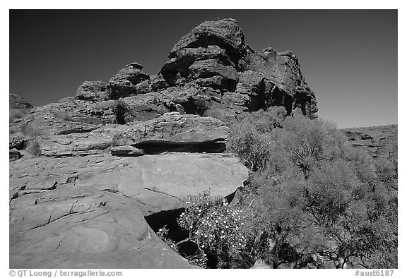 Rock formations in Kings Canyon,  Watarrka National Park. Northern Territories, Australia (black and white)