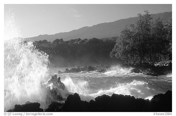 Crashing wave, Keanae Peninsula. Maui, Hawaii, USA (black and white)